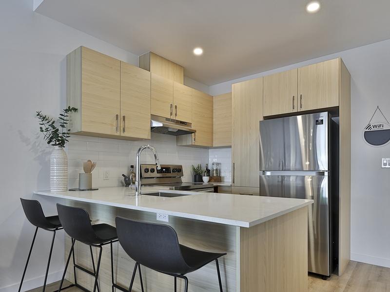 Appartement 2 Chambres a louer à Laval a Milo - Photo 08 - TrouveUnAppart – L405439