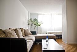 Appartement Studio / Bachelor meublé a louer à Montréal (Centre-Ville) a St Urbain - Photo 04 - TrouveUnAppart – L1704