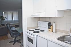 Appartement Studio / Bachelor meublé a louer à Montréal (Centre-Ville) a St Urbain - Photo 06 - TrouveUnAppart – L1704