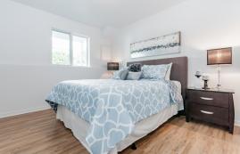 Appartement 1 Chambre a louer à Gatineau-Hull a Du Plateau - Photo 01 - TrouveUnAppart – L8892
