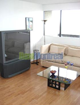 Appartement 1 Chambre a louer à Pierrefonds-Roxboro a Marina Centre - Photo 06 - TrouveUnAppart – L580