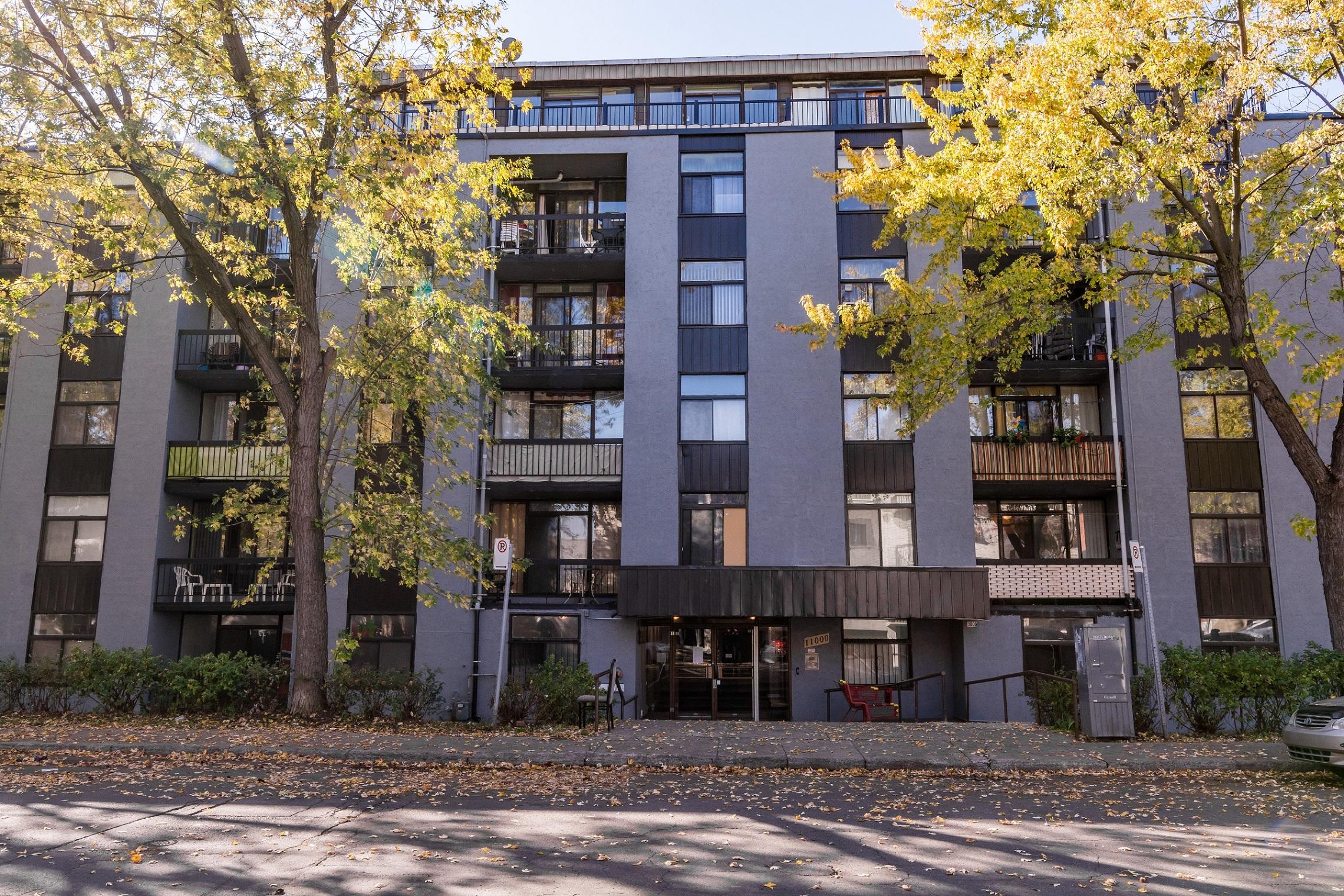 Appartement 1 Chambre a louer à Montreal-Nord a Lacordaire - Photo 05 - TrouveUnAppart – L7644