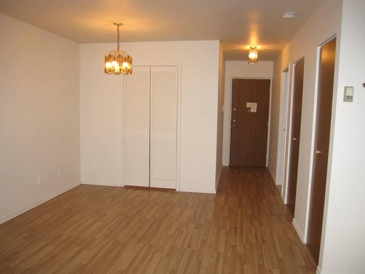 Appartement Studio / Bachelor a louer à Ville St-Laurent - Bois-Franc a Plaza Oasis - Photo 04 - TrouveUnAppart – L403727