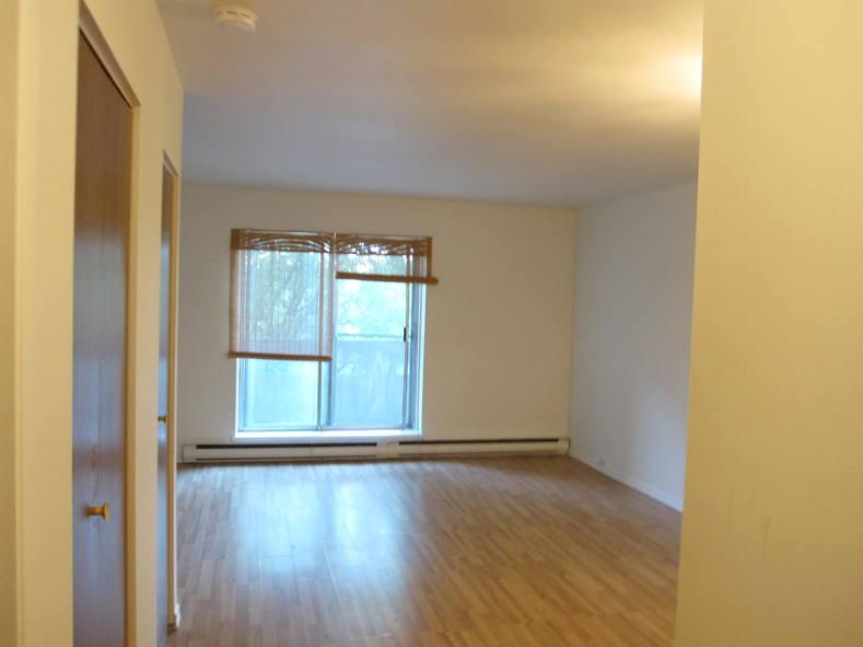 Appartement Studio / Bachelor a louer à Ville St-Laurent - Bois-Franc a Plaza Oasis - Photo 01 - TrouveUnAppart – L403727