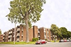 Appartement 1 Chambre a louer à Ville Lasalle a Bridgeview - Photo 01 - TrouveUnAppart – L528