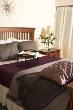 Appartement Studio / Bachelor meublé a louer à Pointe-Claire a Southwest One - Photo 09 - TrouveUnAppart – L21538