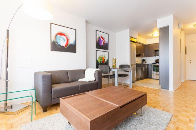 Appartement 1 Chambre a louer à Montréal (Centre-Ville) a Luna - Photo 02 - TrouveUnAppart – L4942