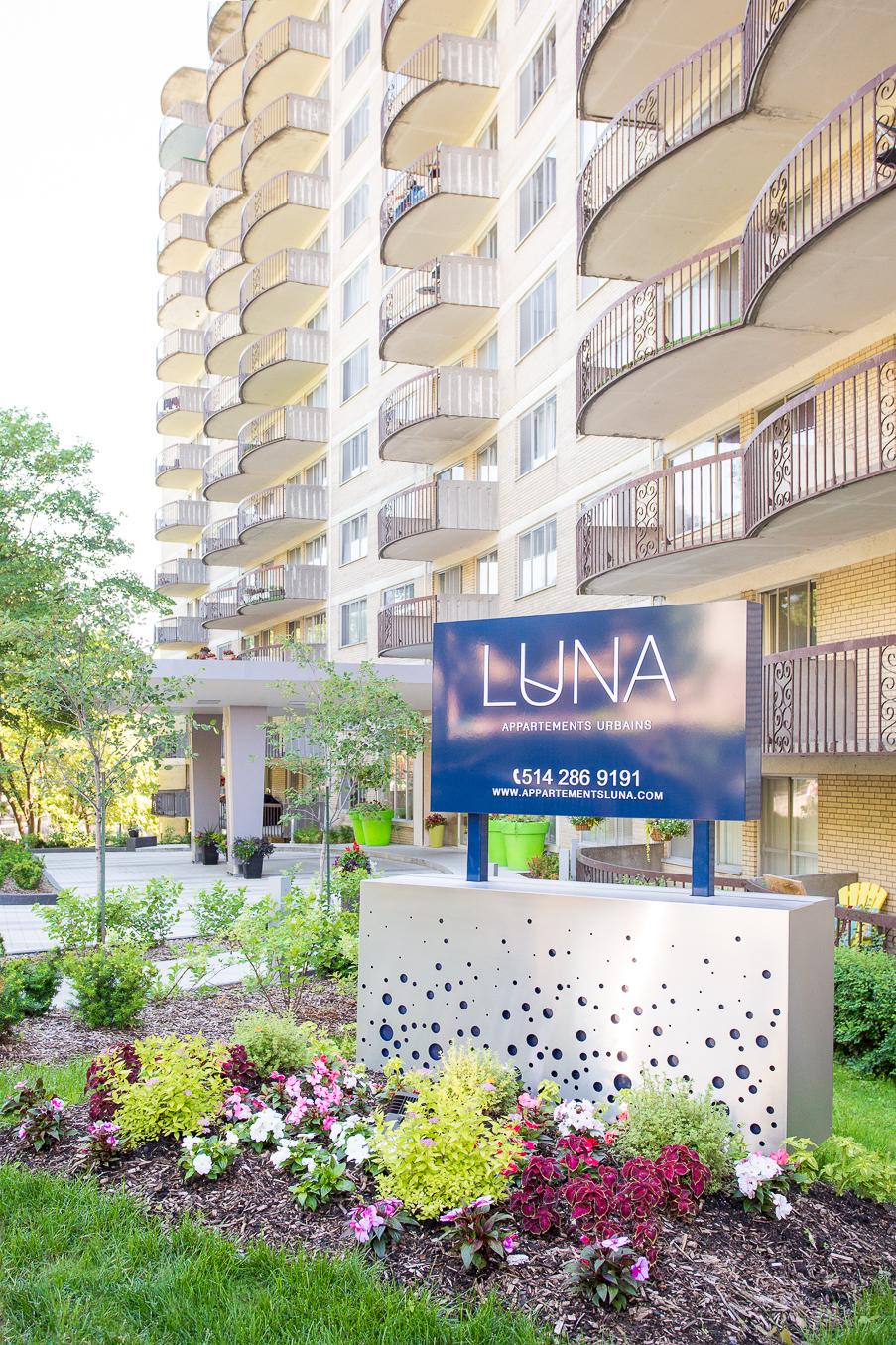 Appartement 1 Chambre a louer à Montréal (Centre-Ville) a Luna - Photo 07 - TrouveUnAppart – L4942