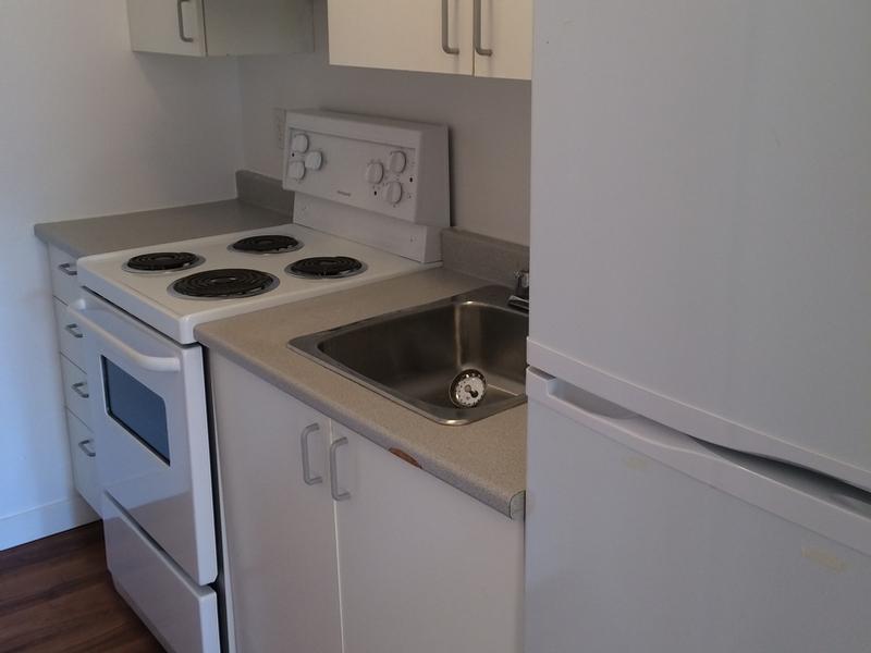 Appartement Studio / Bachelor a louer à Montréal (Centre-Ville) a Aylmer - Photo 02 - TrouveUnAppart – L168577