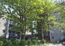 Appartement 1 Chambre a louer à Ville-Lasalle a Seigneurie Lasalle - Photo 01 - TrouveUnAppart – L538