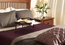 Appartement 1 Chambre meublé a louer à Pointe-Claire a Southwest One - Photo 01 - TrouveUnAppart – L7114