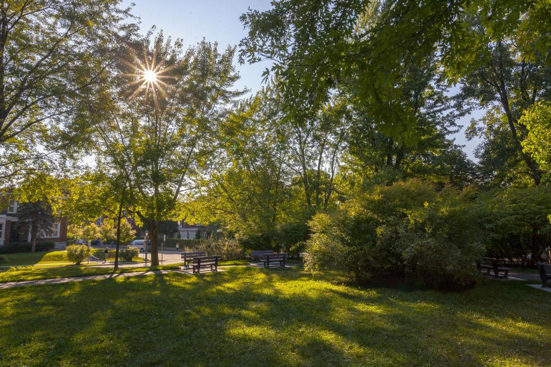 Appartement 1 Chambre a louer dans la Ville de Québec a Appartements Pere-Marquette - Photo 04 - TrouveUnAppart – L279634