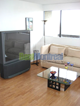 Appartement 2 Chambres a louer à Pierrefonds-Roxboro a Marina Centre - Photo 02 - TrouveUnAppart – L582