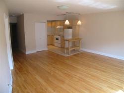 Appartement Studio / Bachelor a louer à Montréal (Centre-Ville) a 3687 Clark - Photo 08 - TrouveUnAppart – L6442