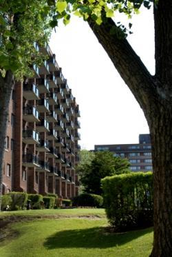 Appartement Studio / Bachelor a louer à Pointe-Claire a Southwest One - Photo 12 - TrouveUnAppart – L8710