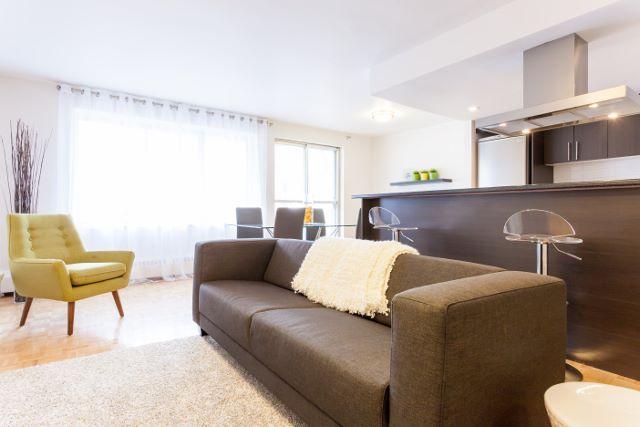 Appartement 2 Chambres a louer à Montréal (Centre-Ville) a Luna - Photo 03 - TrouveUnAppart – L4943
