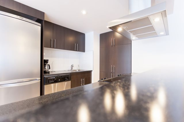 Appartement 2 Chambres a louer à Montréal (Centre-Ville) a Luna - Photo 06 - TrouveUnAppart – L4943