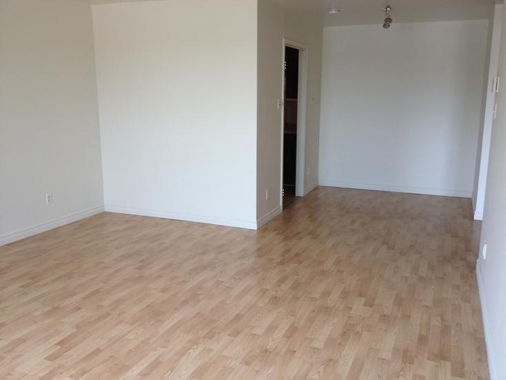 Appartement 1 Chambre a louer à Ville St-Laurent - Bois-Franc a Plaza Oasis - Photo 10 - TrouveUnAppart – L605