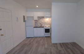 Appartement Studio / Bachelor a louer à Outremont a 1310-1314 Lajoie - Photo 01 - TrouveUnAppart – L209579
