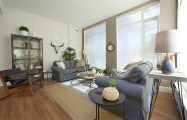 Appartement 1 Chambre de luxe a louer à Ottawa a Nuovo - Photo 01 - TrouveUnAppart – L399914
