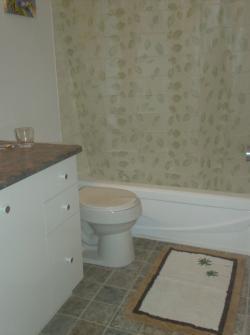 Appartement 1 Chambre meublé a louer à Longueuil a 555 du Roussillon - Photo 01 - TrouveUnAppart – L5893