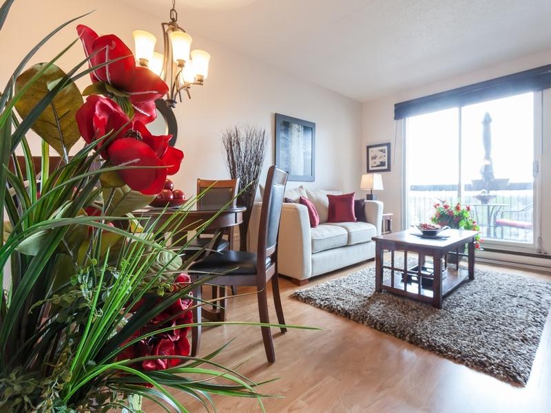 Appartement 1 Chambre a louer à Laval a Les Habitations du Souvenir - Photo 02 - TrouveUnAppart – L4967